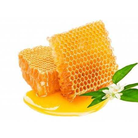 panal de miel de abejas